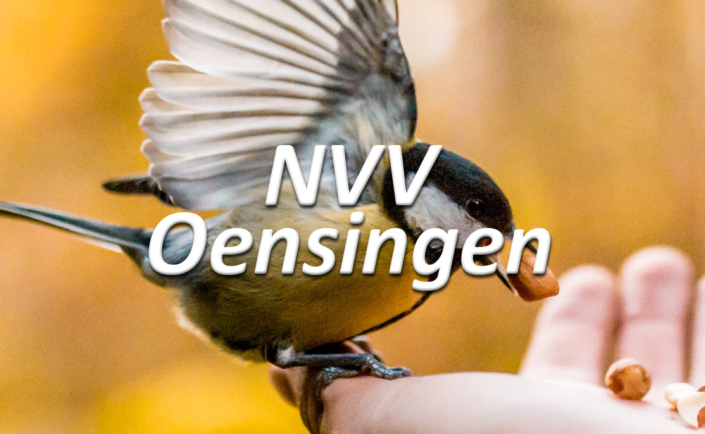 progra - NVVO Natur- und Vogelschutzverein Oensingen
